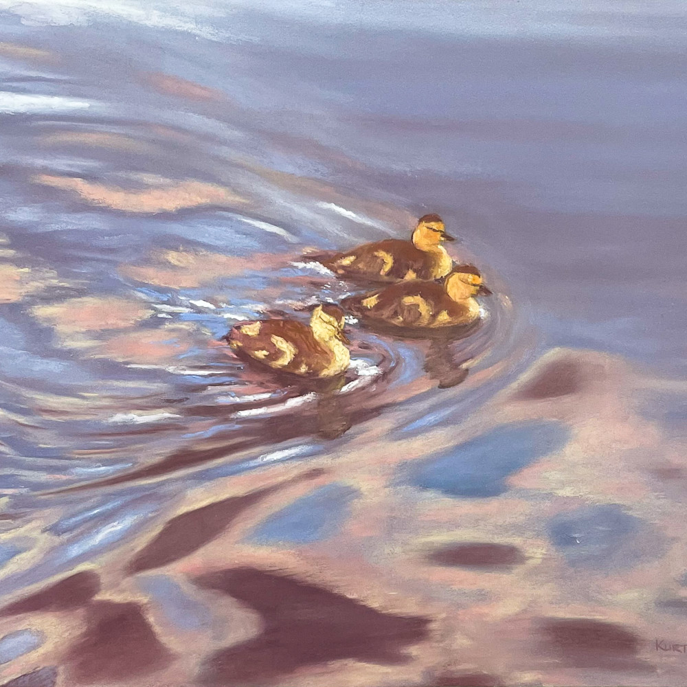 Ducks zmkl6b