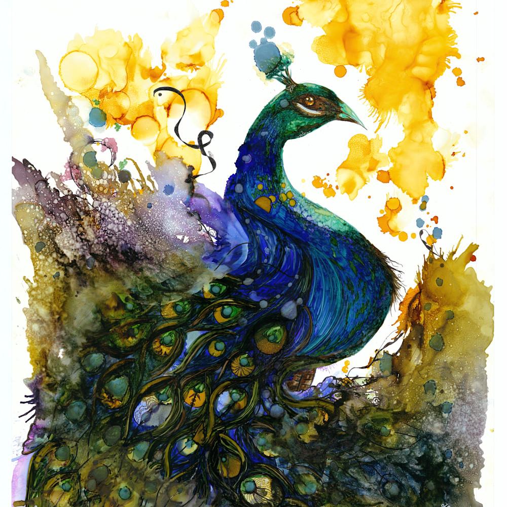 Peacock 2hd aoprxp