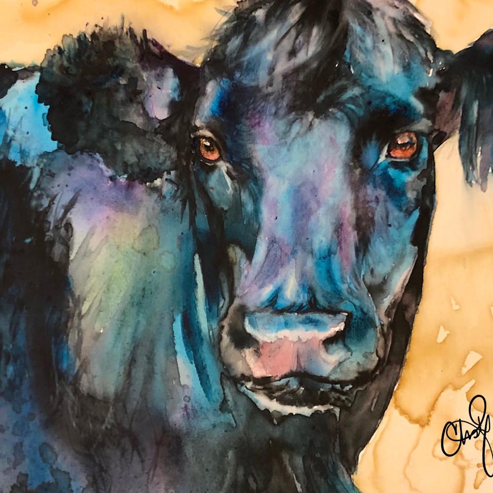 Cow smoub8