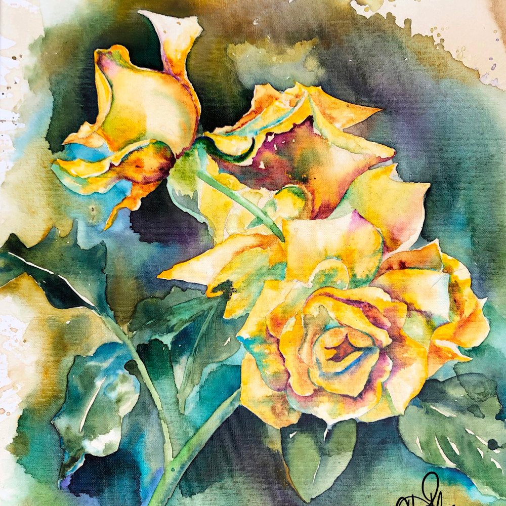 Yellow roses x4rihf