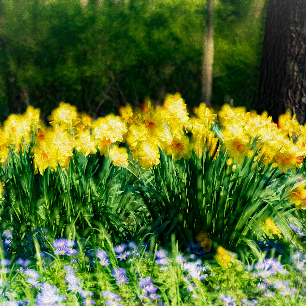 Forest flowers oip6ks
