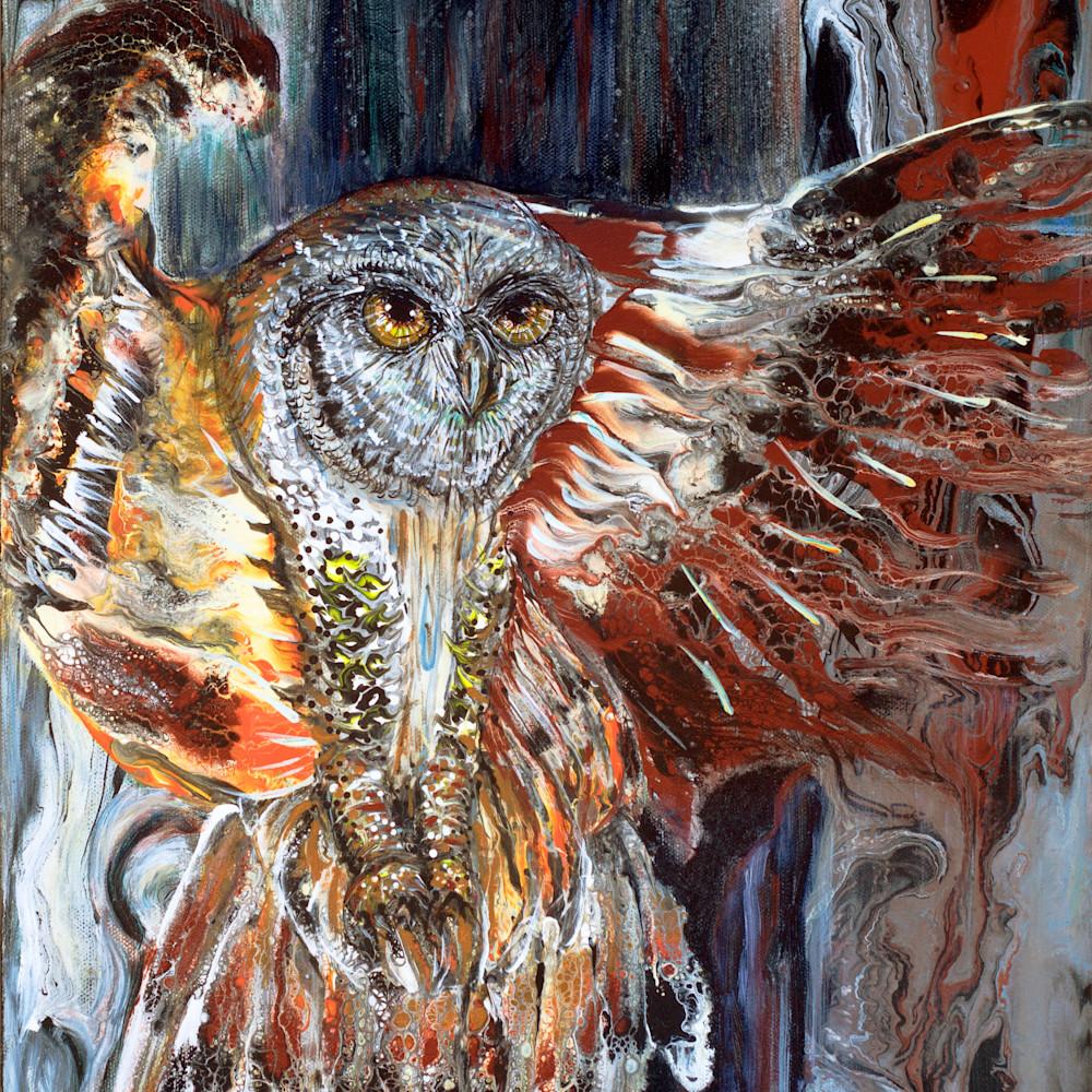 Lisa abbott   owl kbflkq