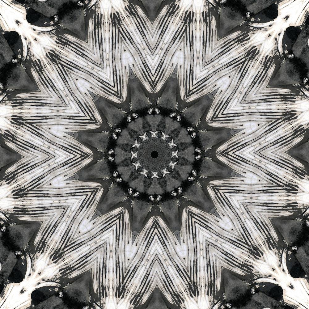 Kaleidoscopics 258 encbun