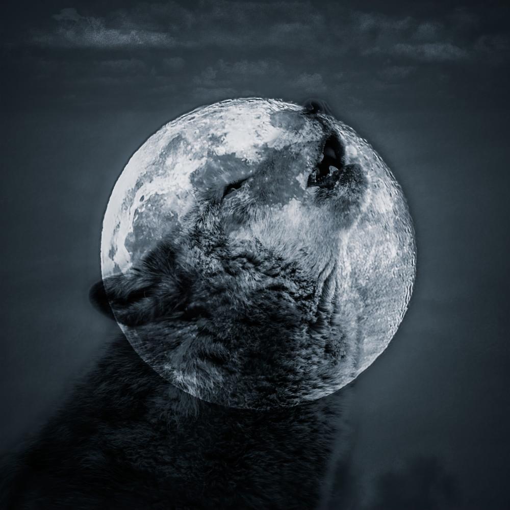 Spirit of the wolf 1 of 1 i40ub8