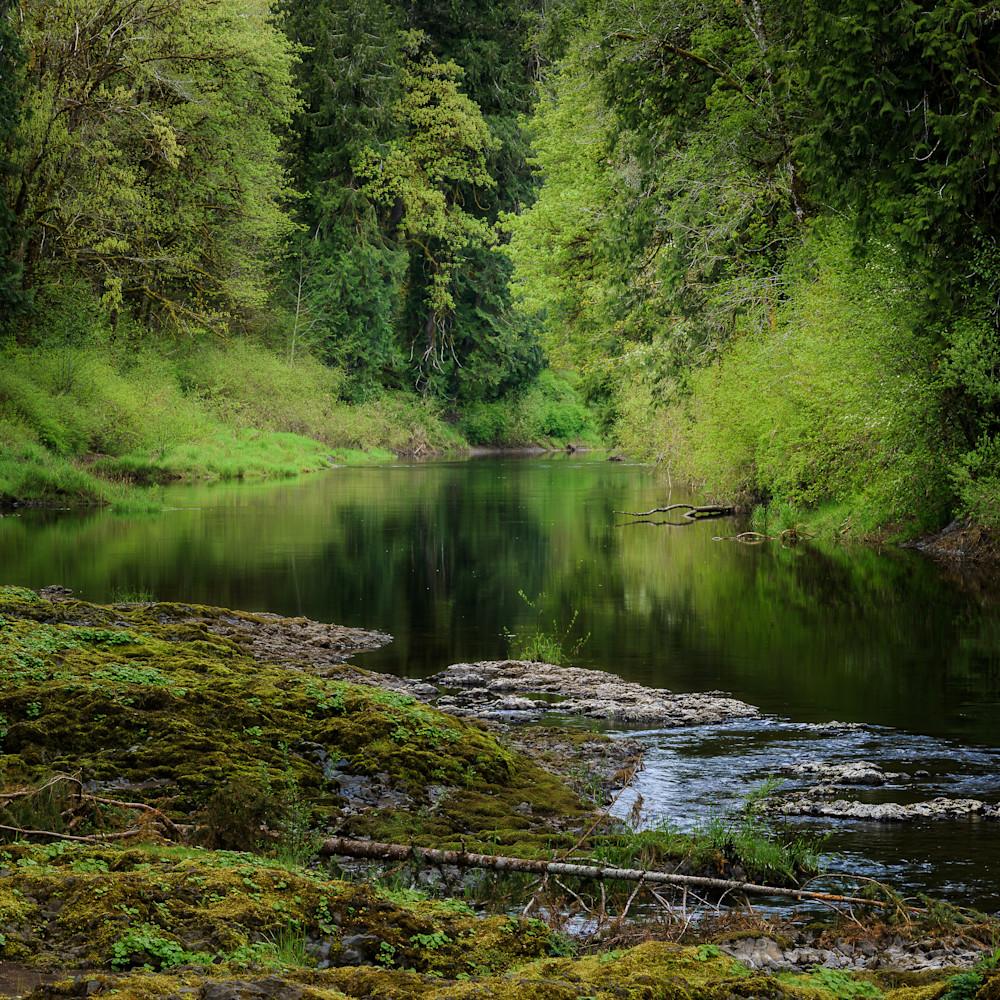 Chehalis river rainbow falls state park washington 2021 fbxien