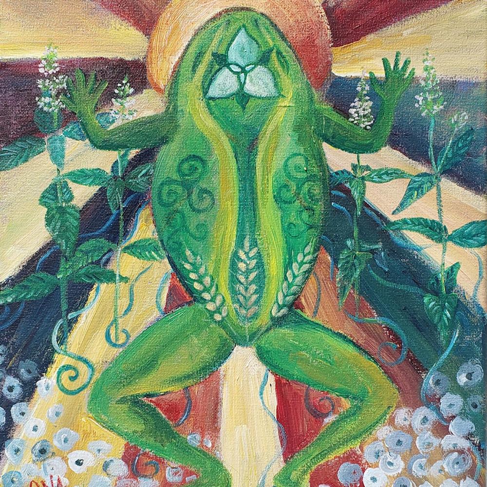 Frog spirit vysmip