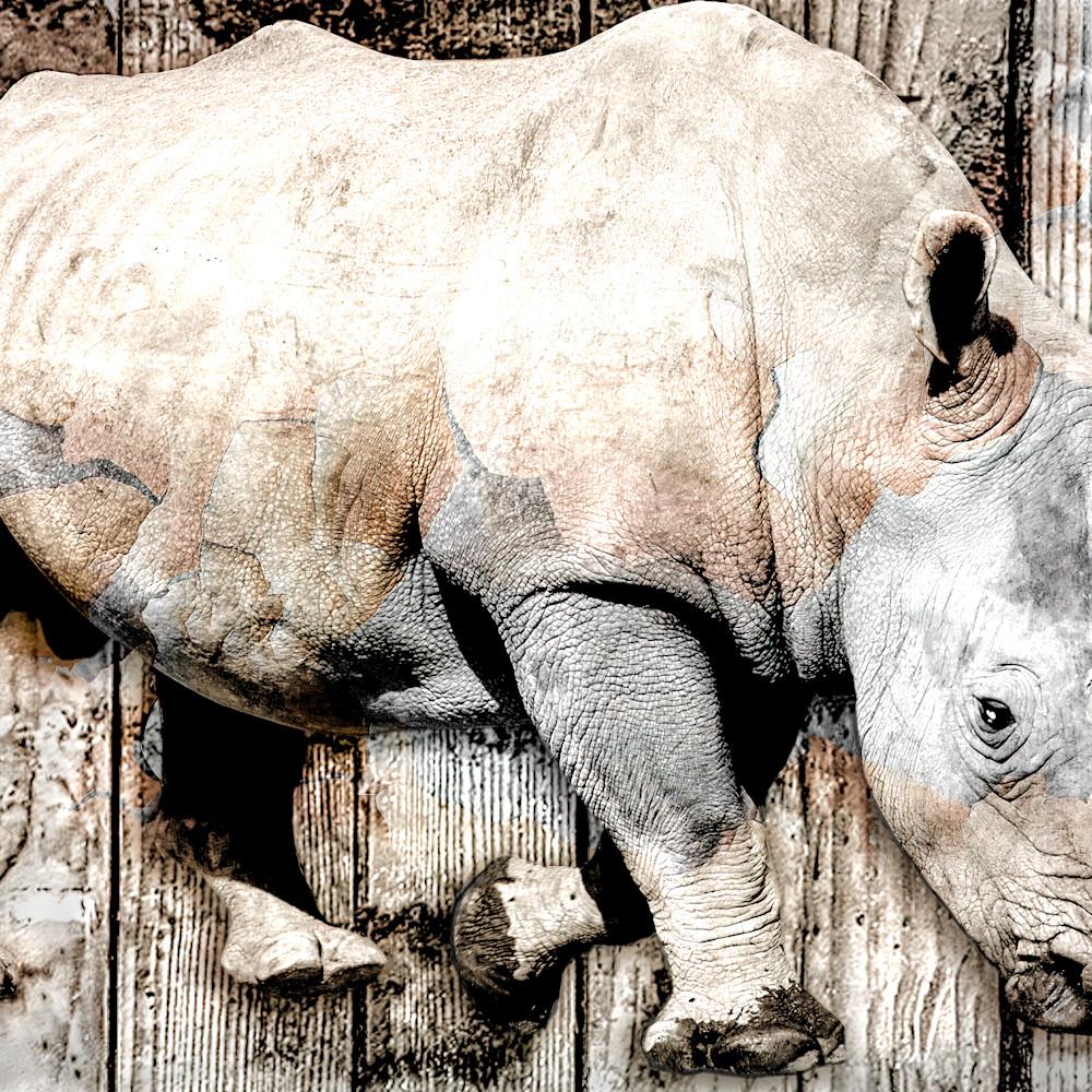 Wrinkled rhino 002 soft mist 003  1398958601 verycompressed width 5400px gigapixel xqzlab