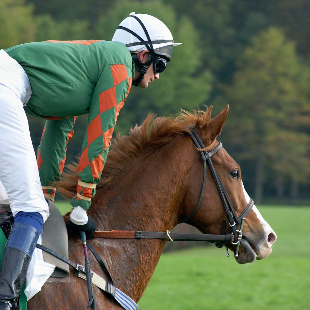 Horse and jockey u6dl8i