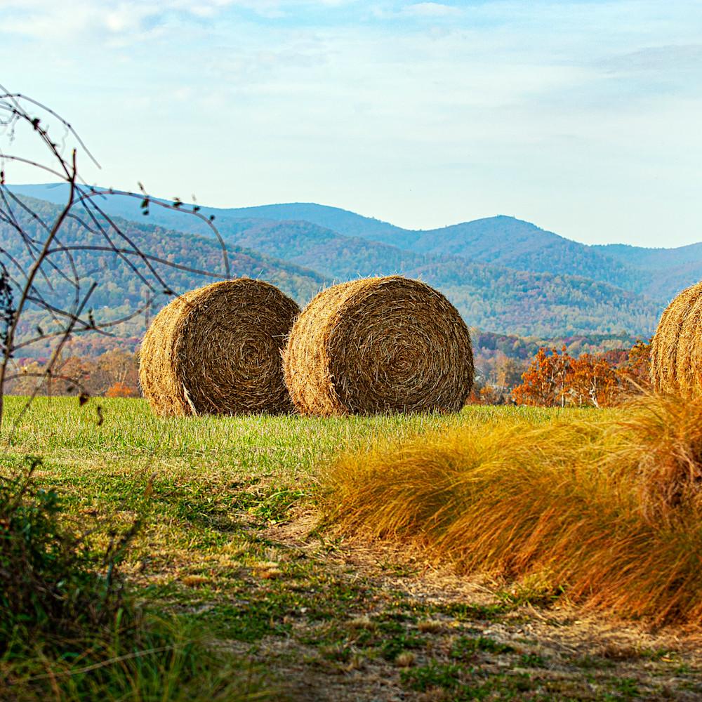 Virginia farm bh9gzb