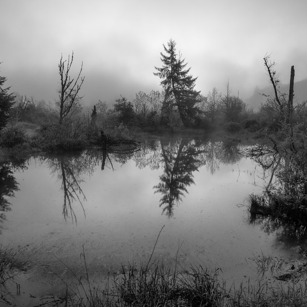 Grays river estuary washington 2021 wyns89