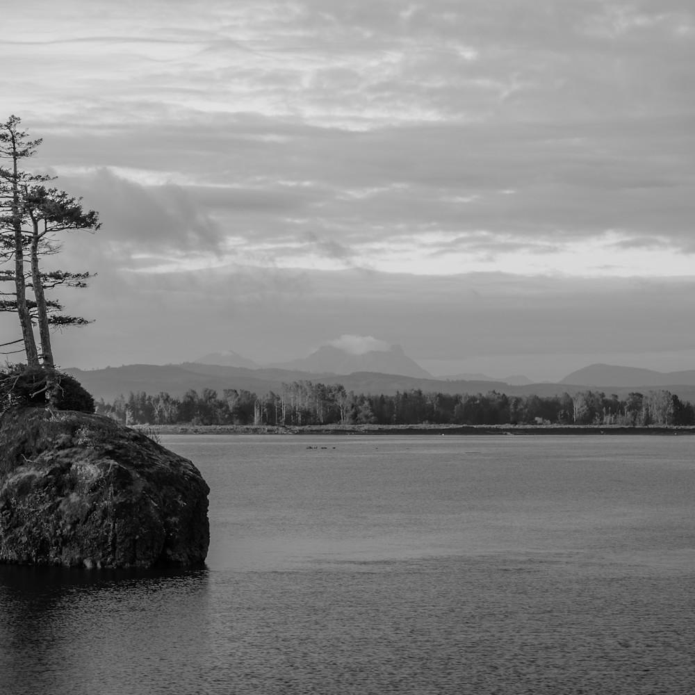Two trees on a rock altoona washington 2021 an35ep