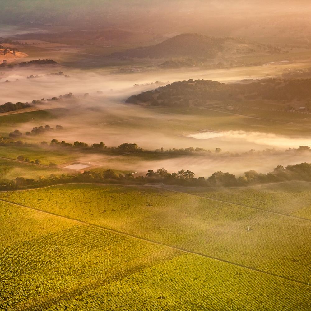 Foggy napa valley sunrise 1047 ozwwjz