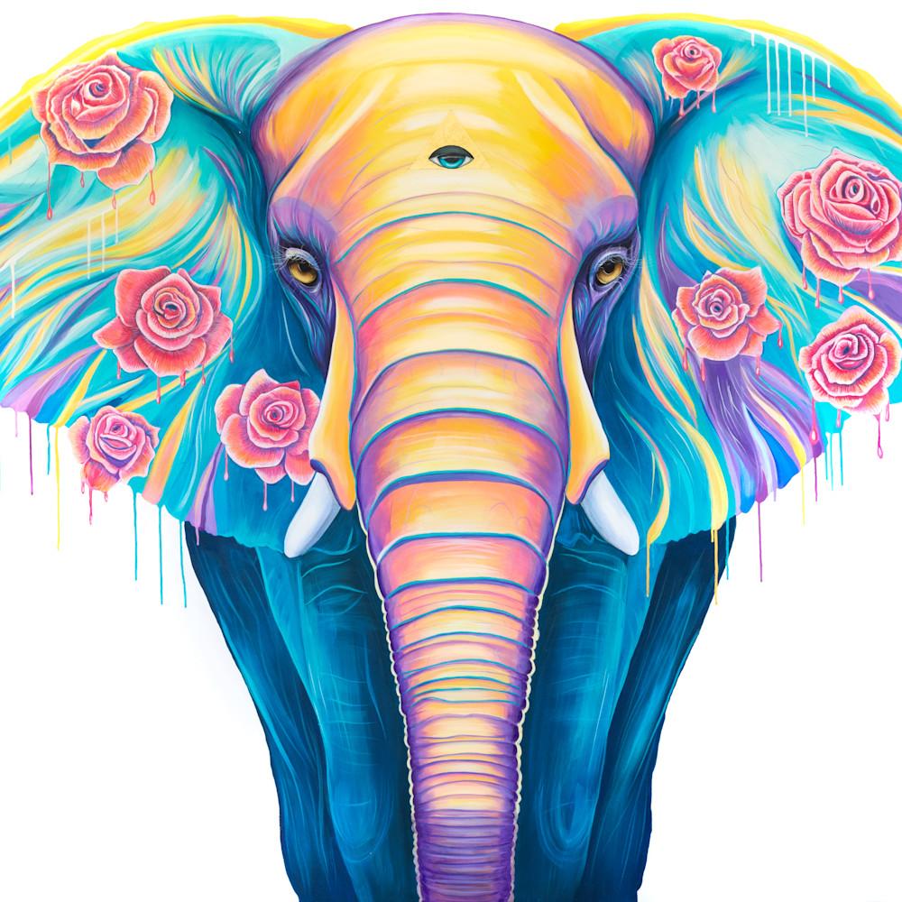 Elephant prin roses pnjp4a