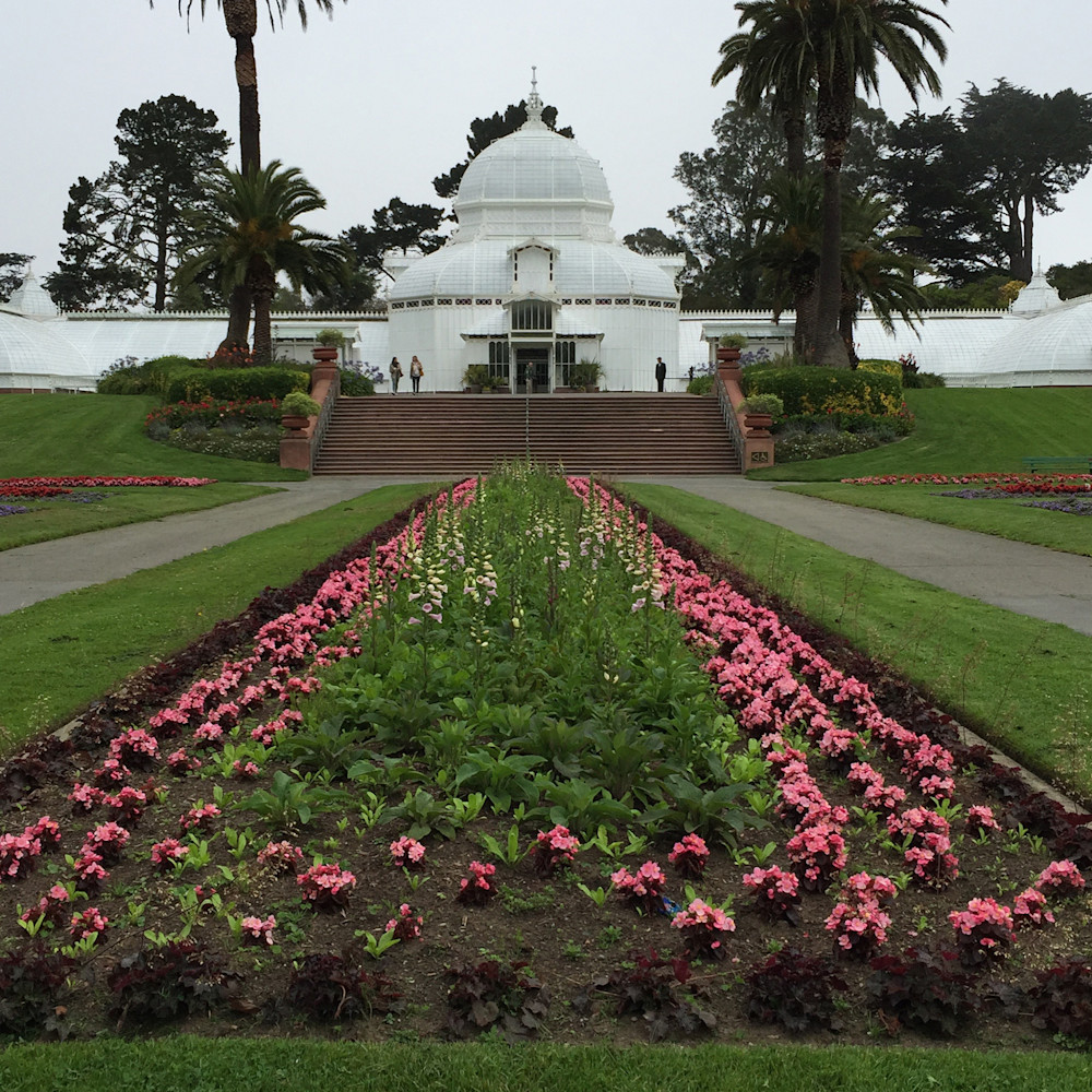 San francisco conservatory of flowers mcnbde