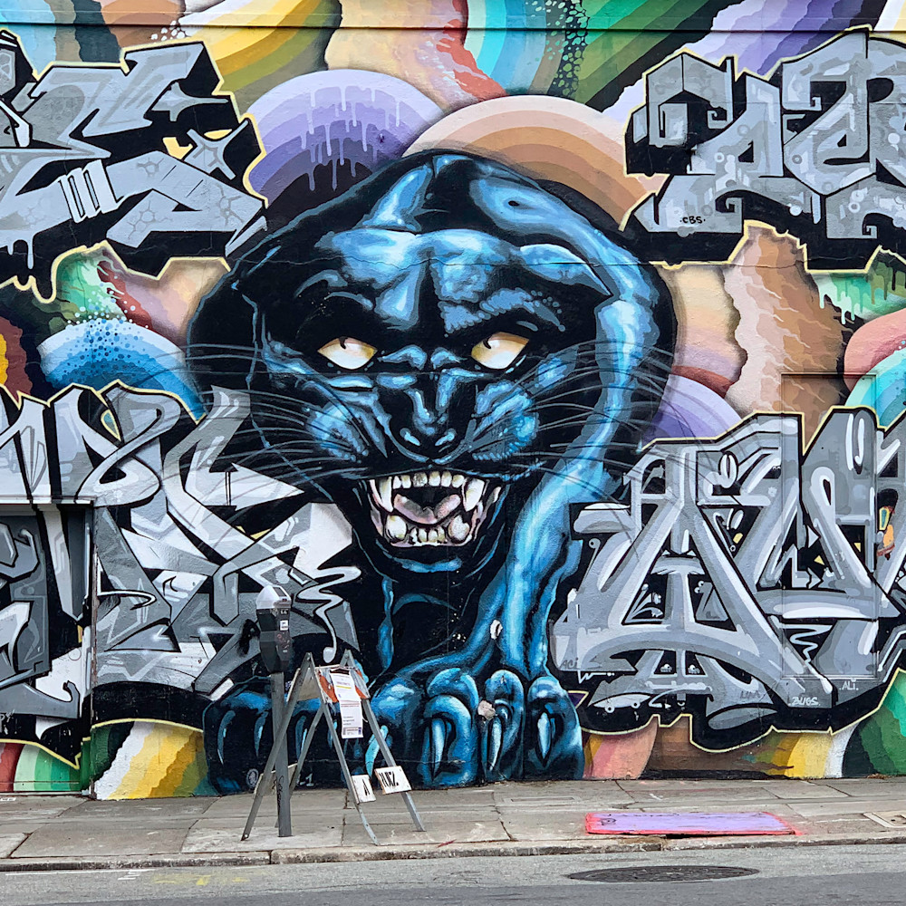 Graffiti leopard svxunq