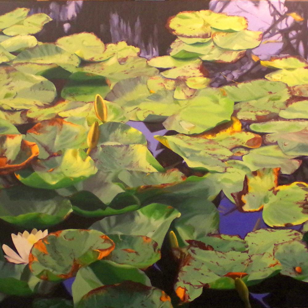 Water lily riot y8l4jo