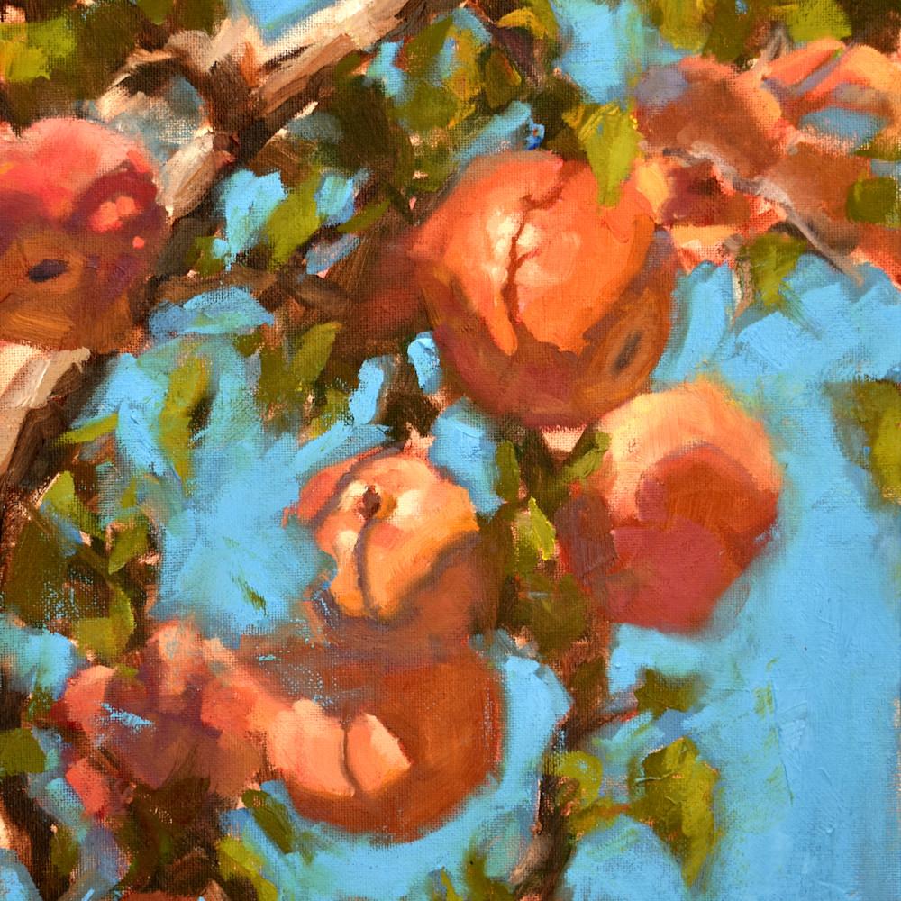 Carter mountain apples 12x16 oil 2021 qnn1hx
