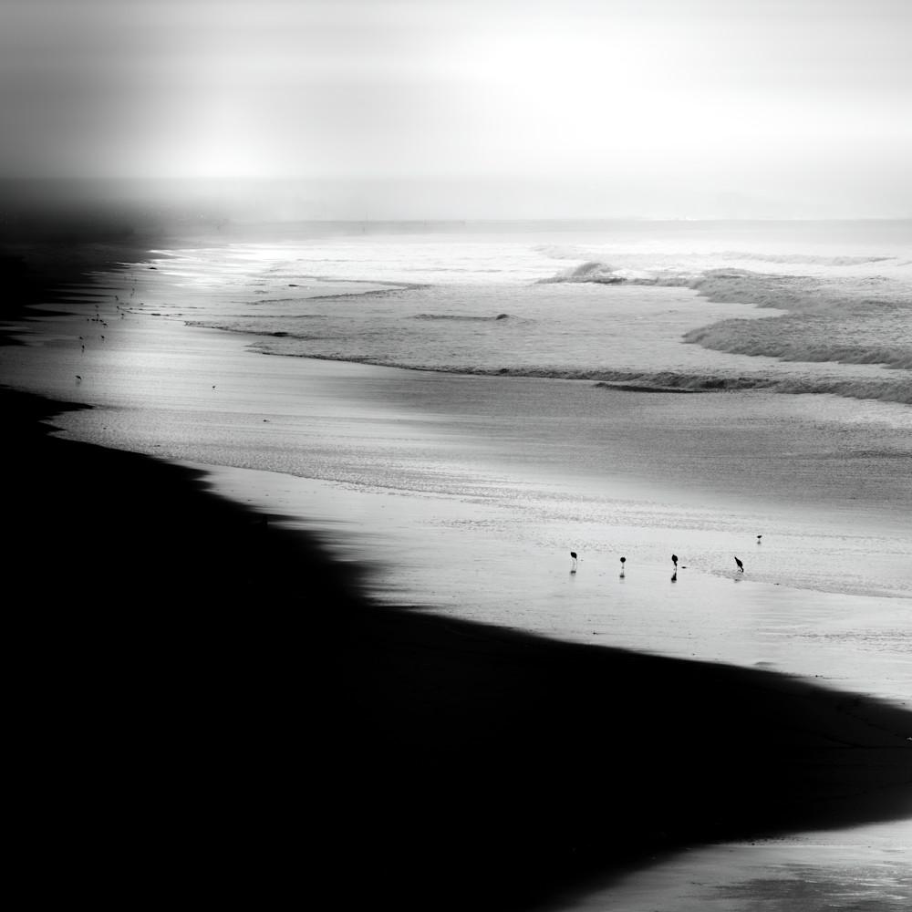 Life is a beach yscujt
