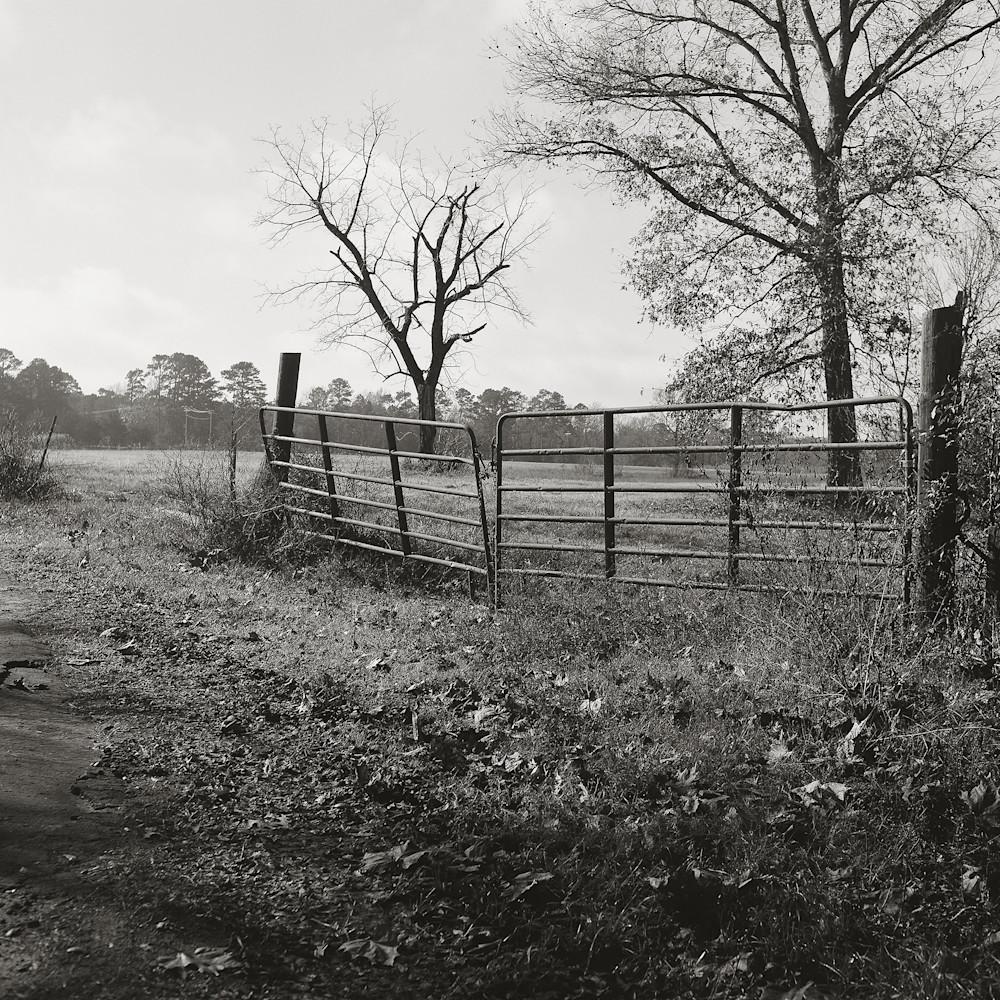 Texas pasture yxc2qa