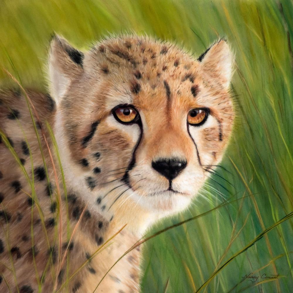 Cheetah beasley hr rsm9uw