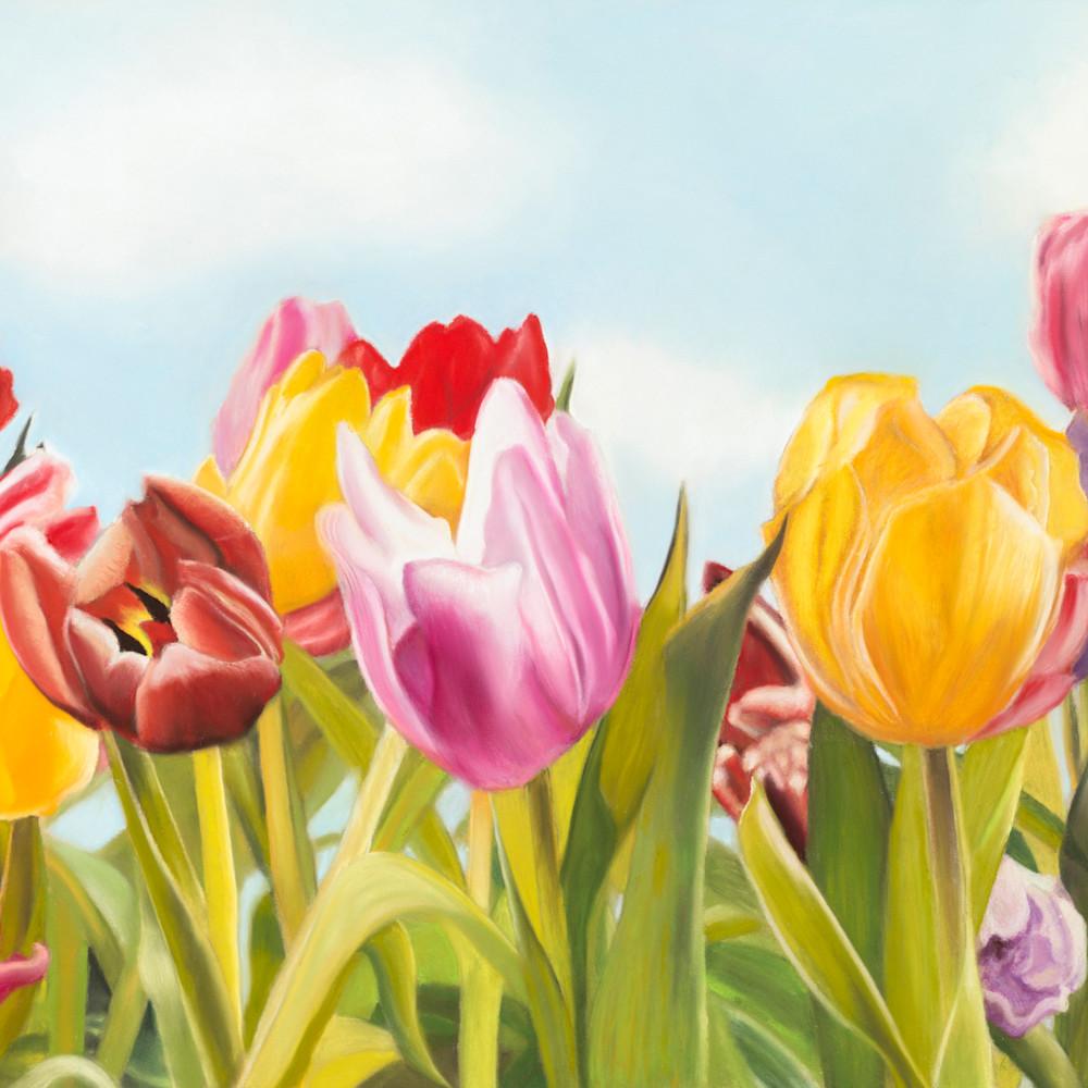 Tulip delight jpg bkui3m