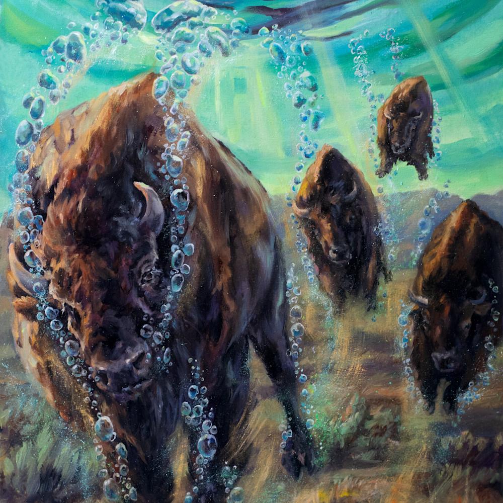 Floatingtheplains buffalos o6agde