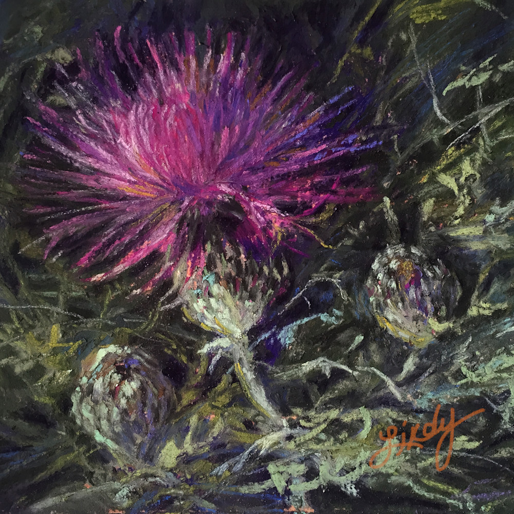 17g16 a thistle in time square 2g popu8f
