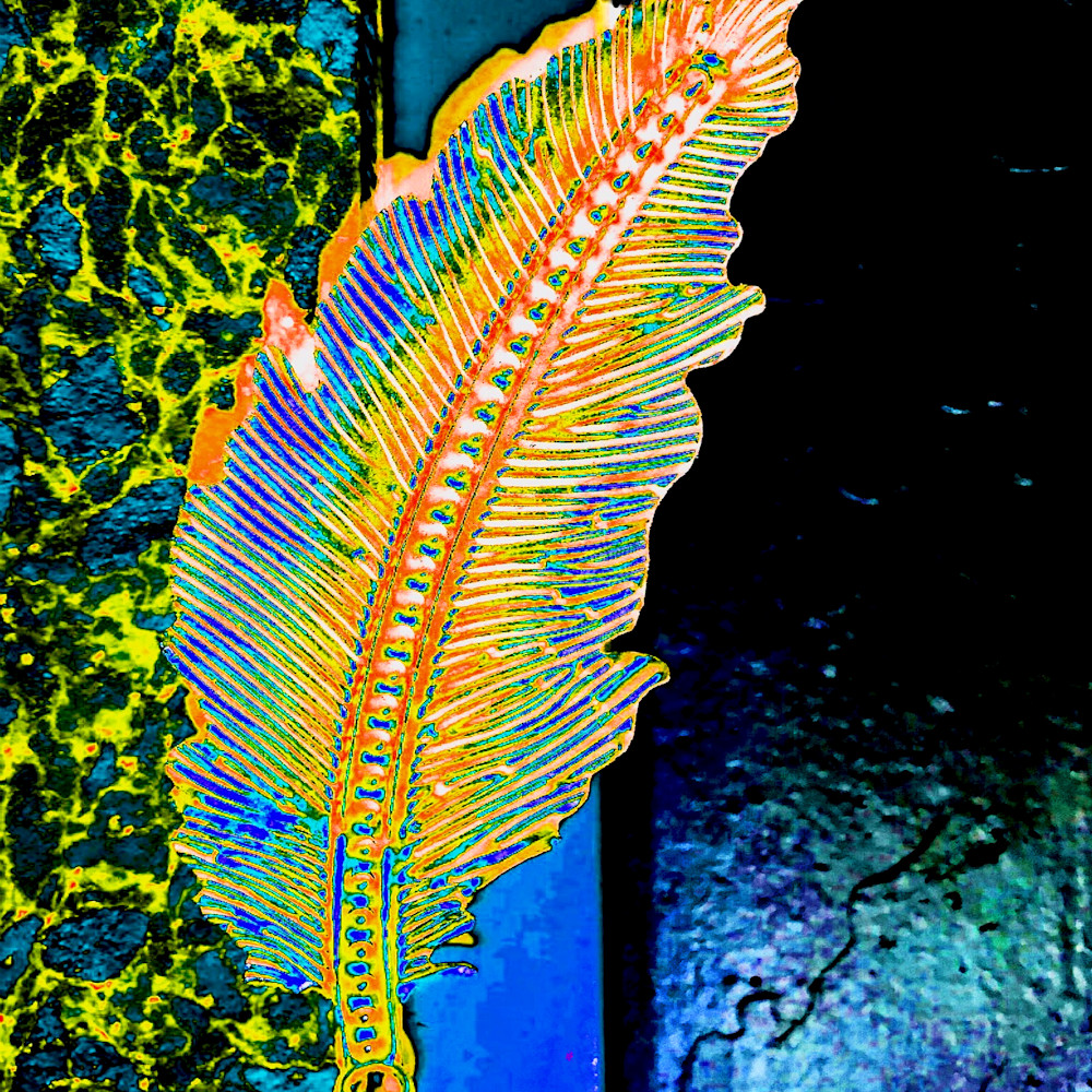 Feather light prps signed asf b1h9mt