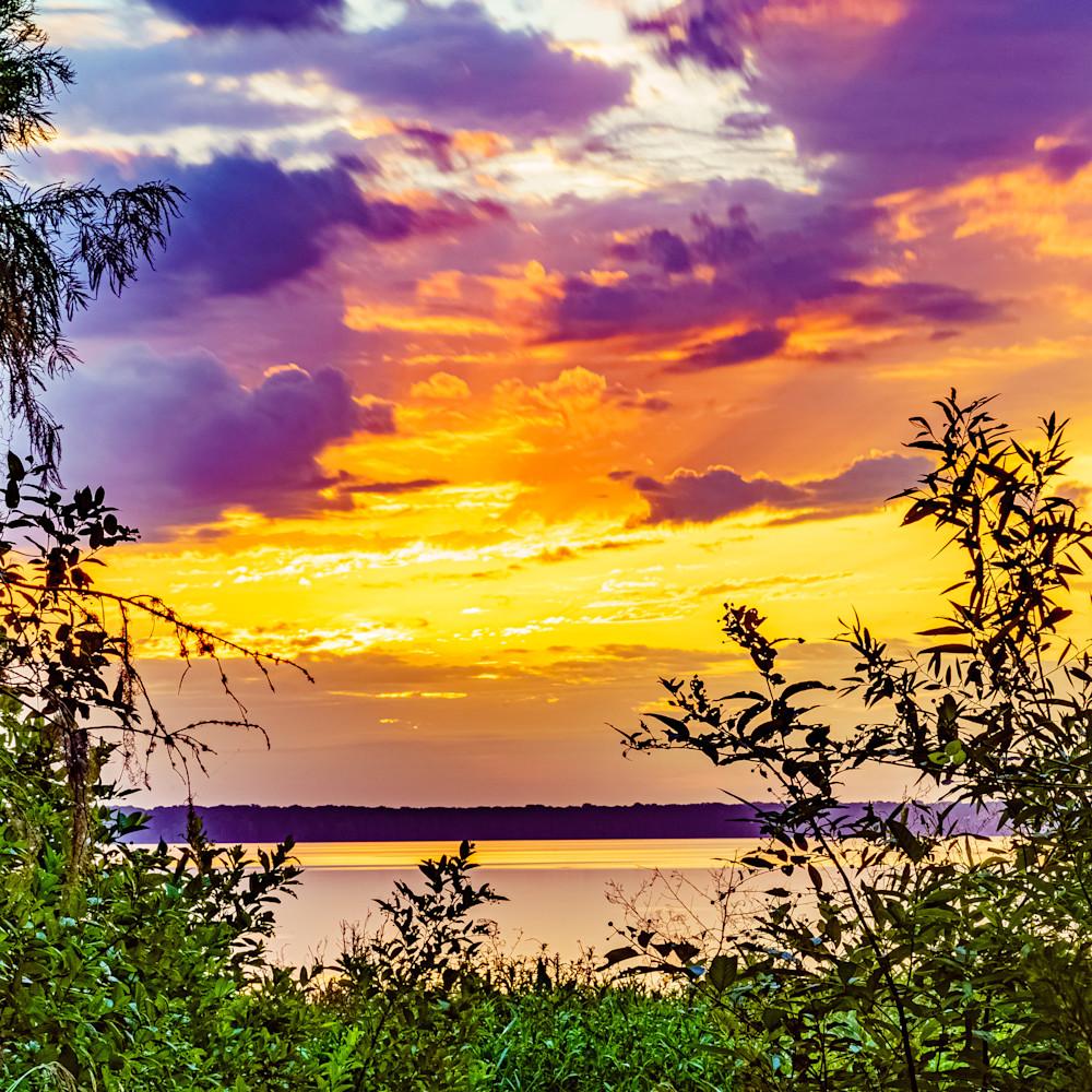 Newnans lake sunrise in gainesville florida sa7shi