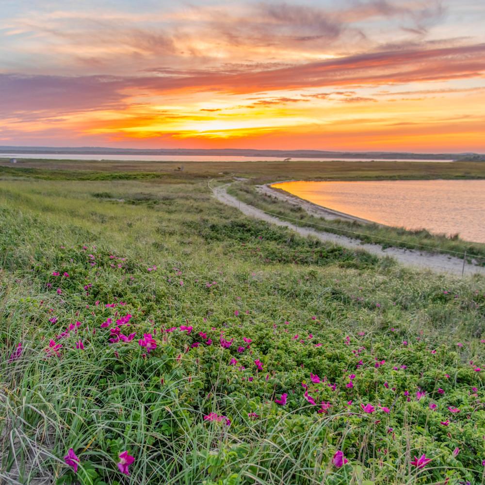 Long point beach rose sunset ba9w5q