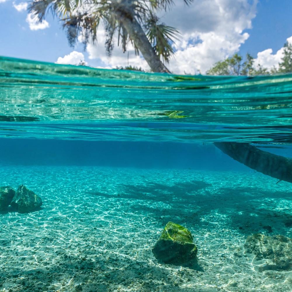 Silver springs underwater  23 4 jkawcz