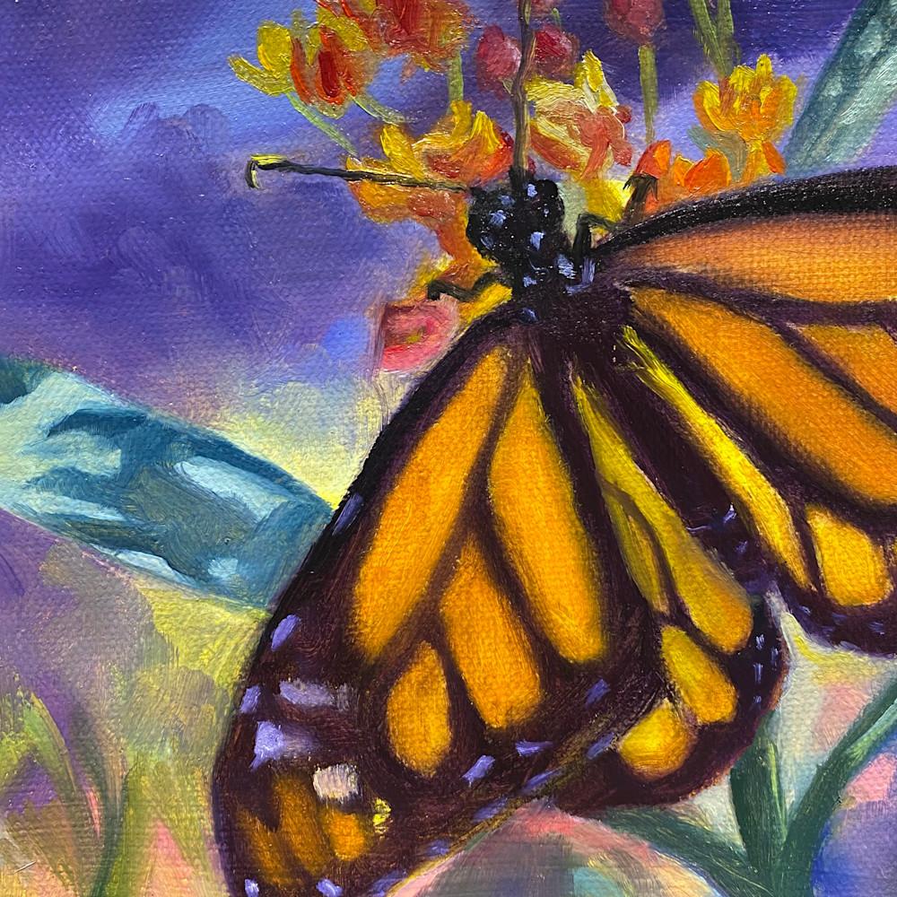 Magnificent monarch5x5 xxkjsm