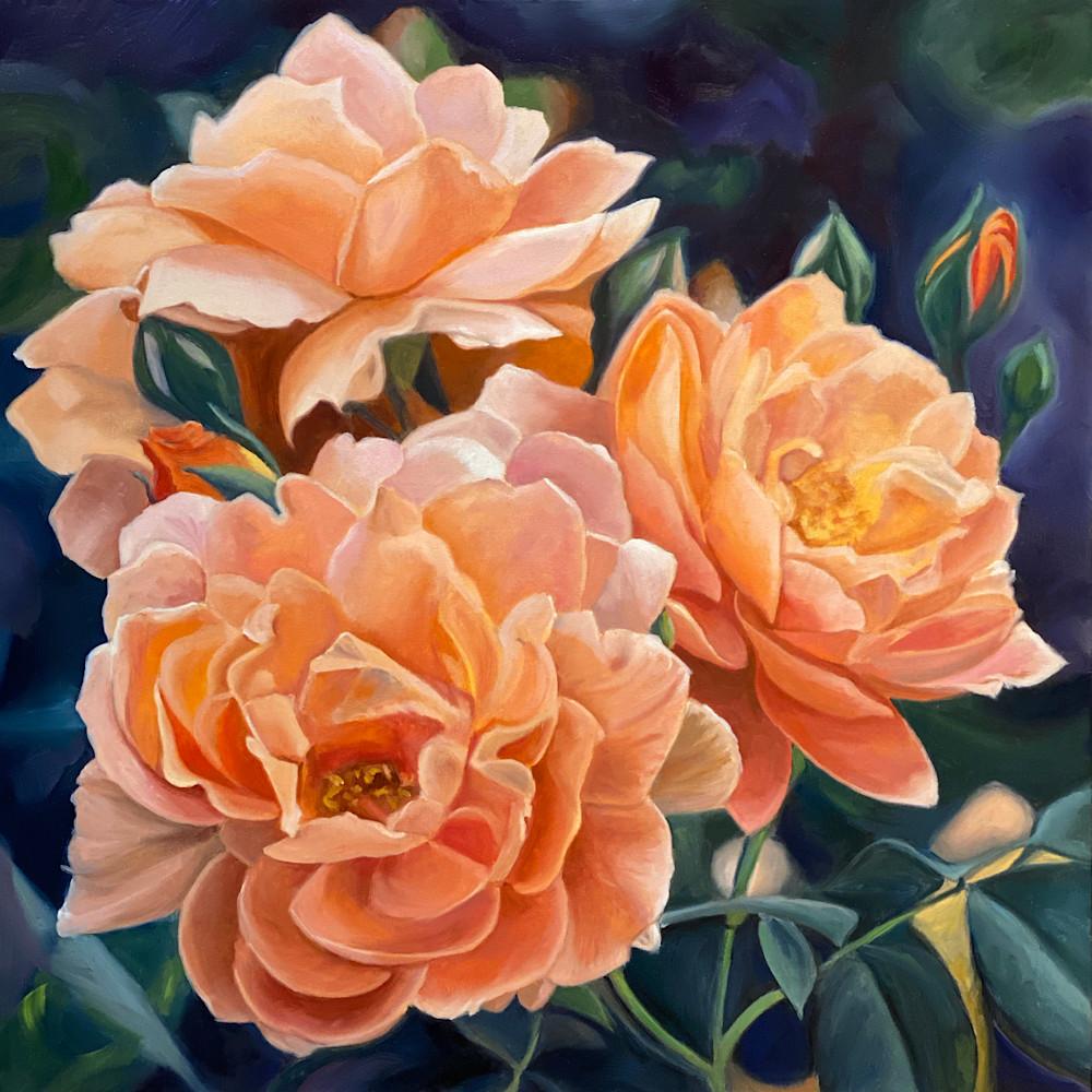 Three china roses1to1 qgqlws