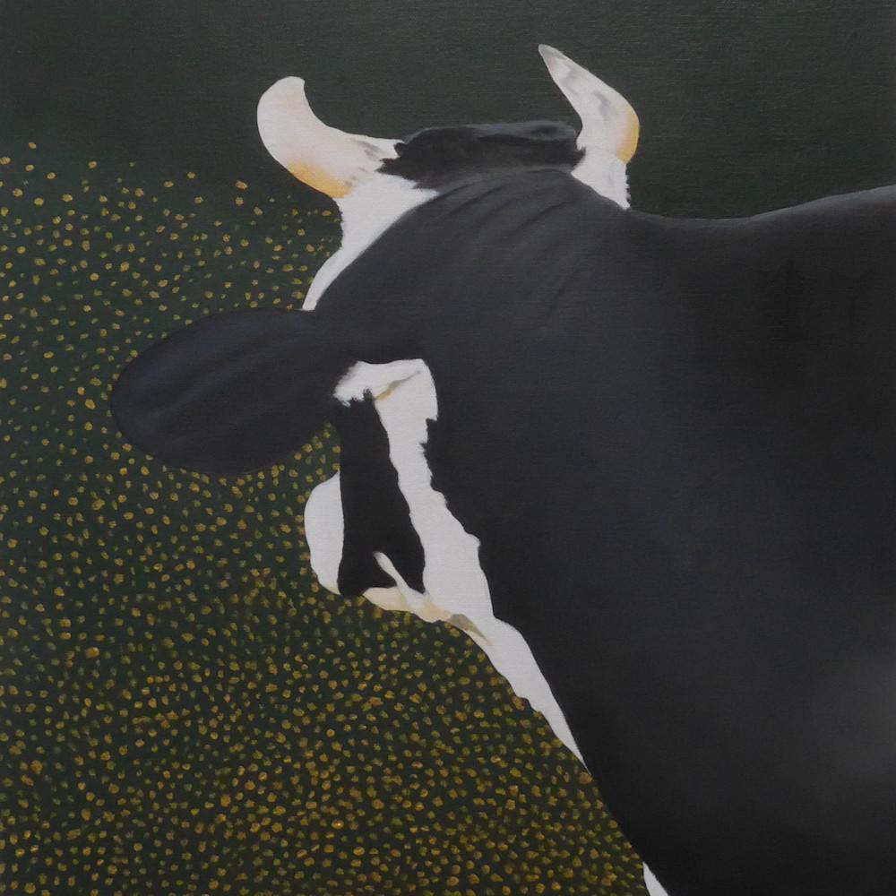 La volie vache ix fcpi2g