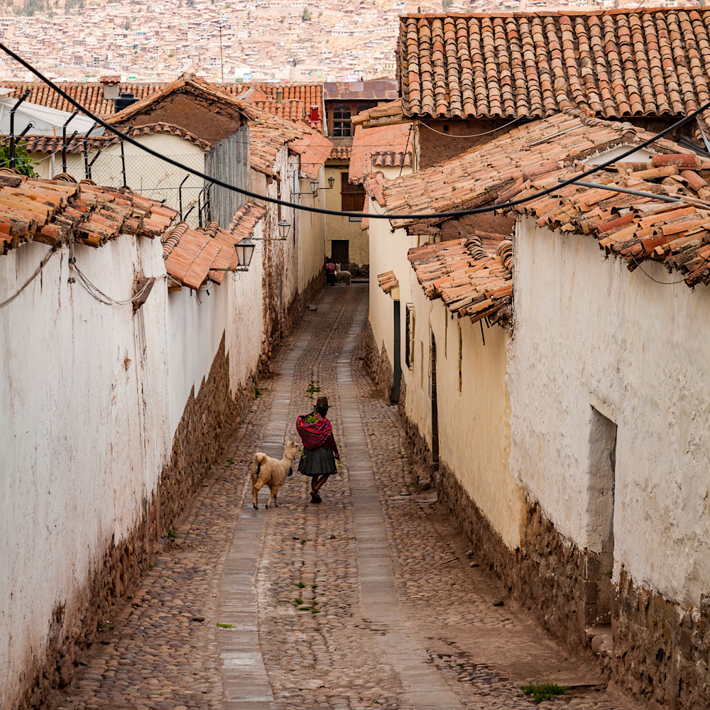 Peruvian woman with alpaca 0152 zjsyqg