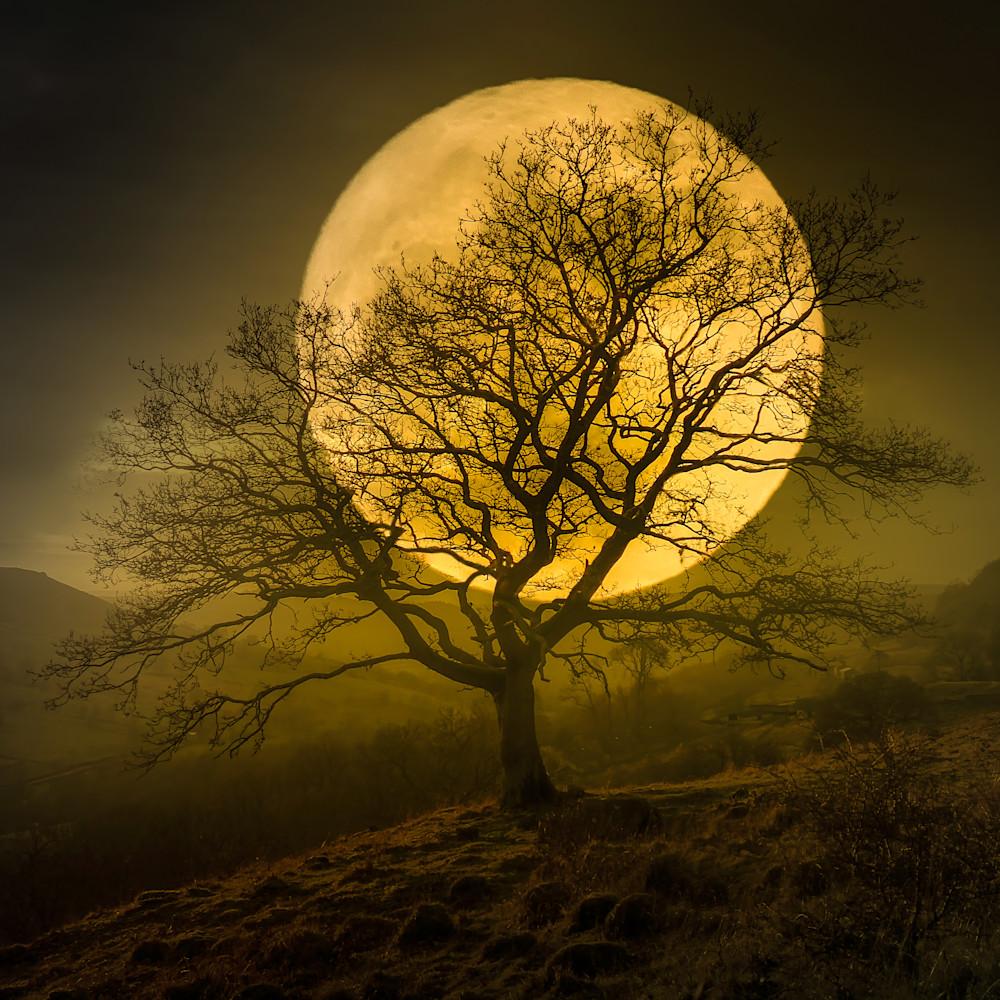 Harvest moon 0621 guscd8