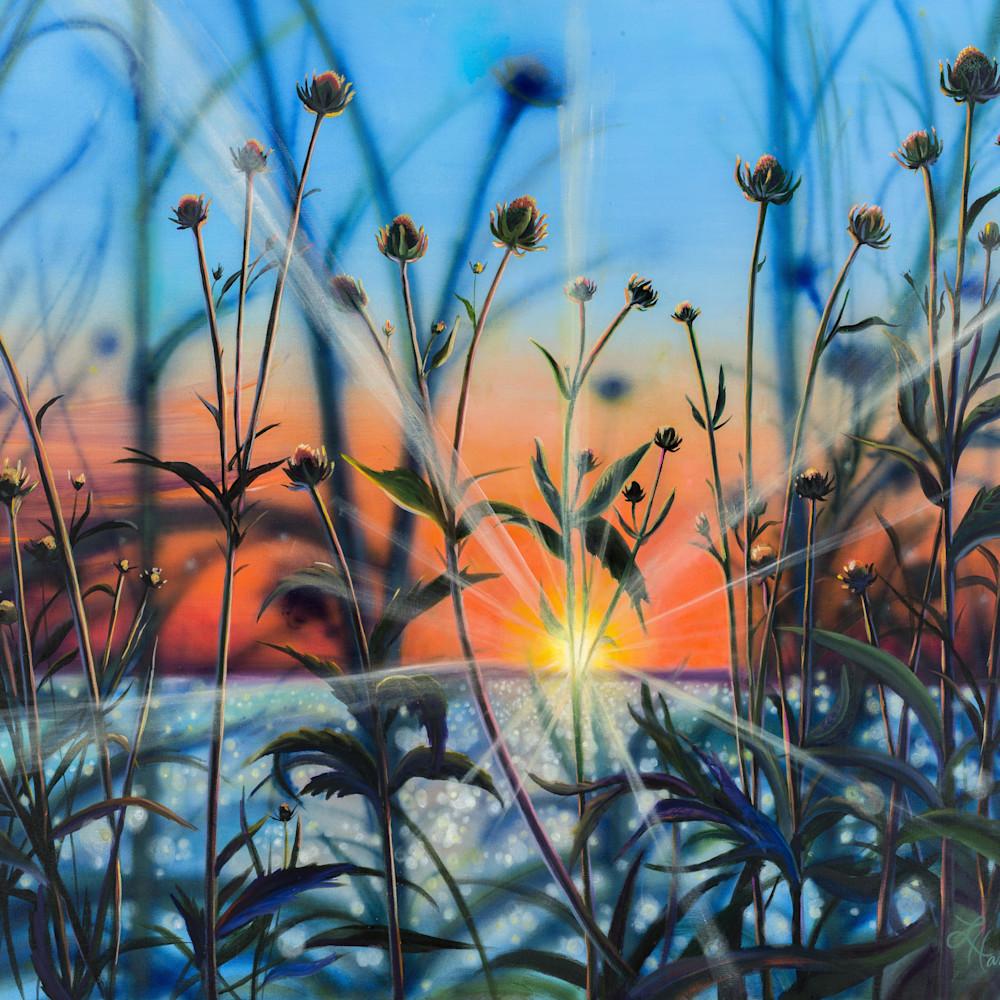 Sunset silhouette bylzdv