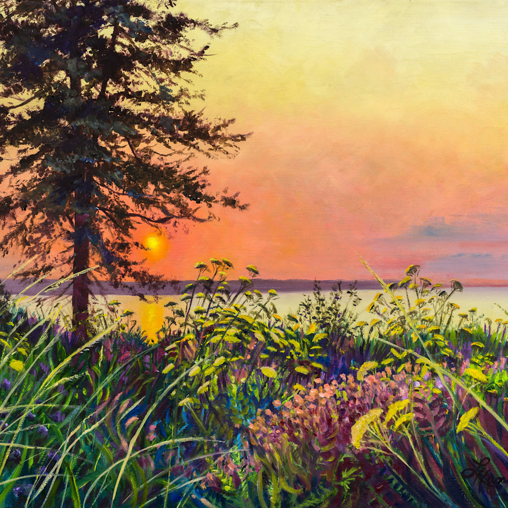 Sunset across the bay mpneua