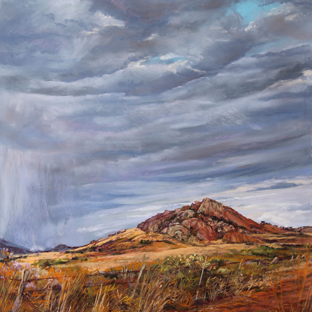 A welcome drenching 4d10 16x12 pastel lindy cook severns 2g cdzcqs