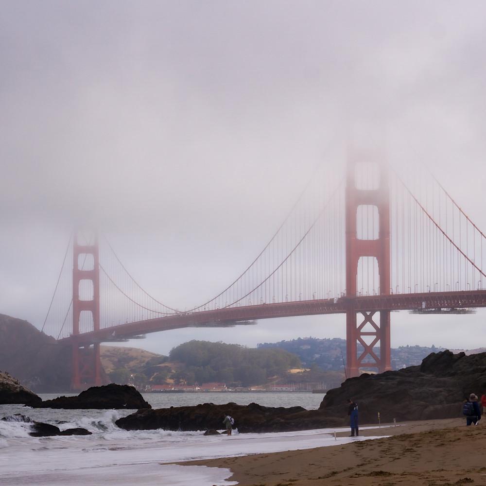 As the fog slowly lifts foggy coast 5 of many mnr9ie