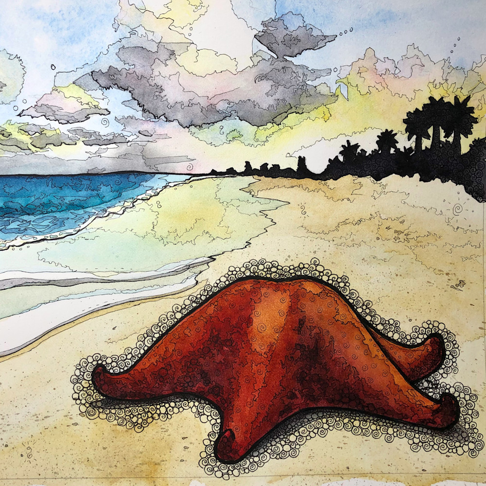 Bahama starfish square zujddj