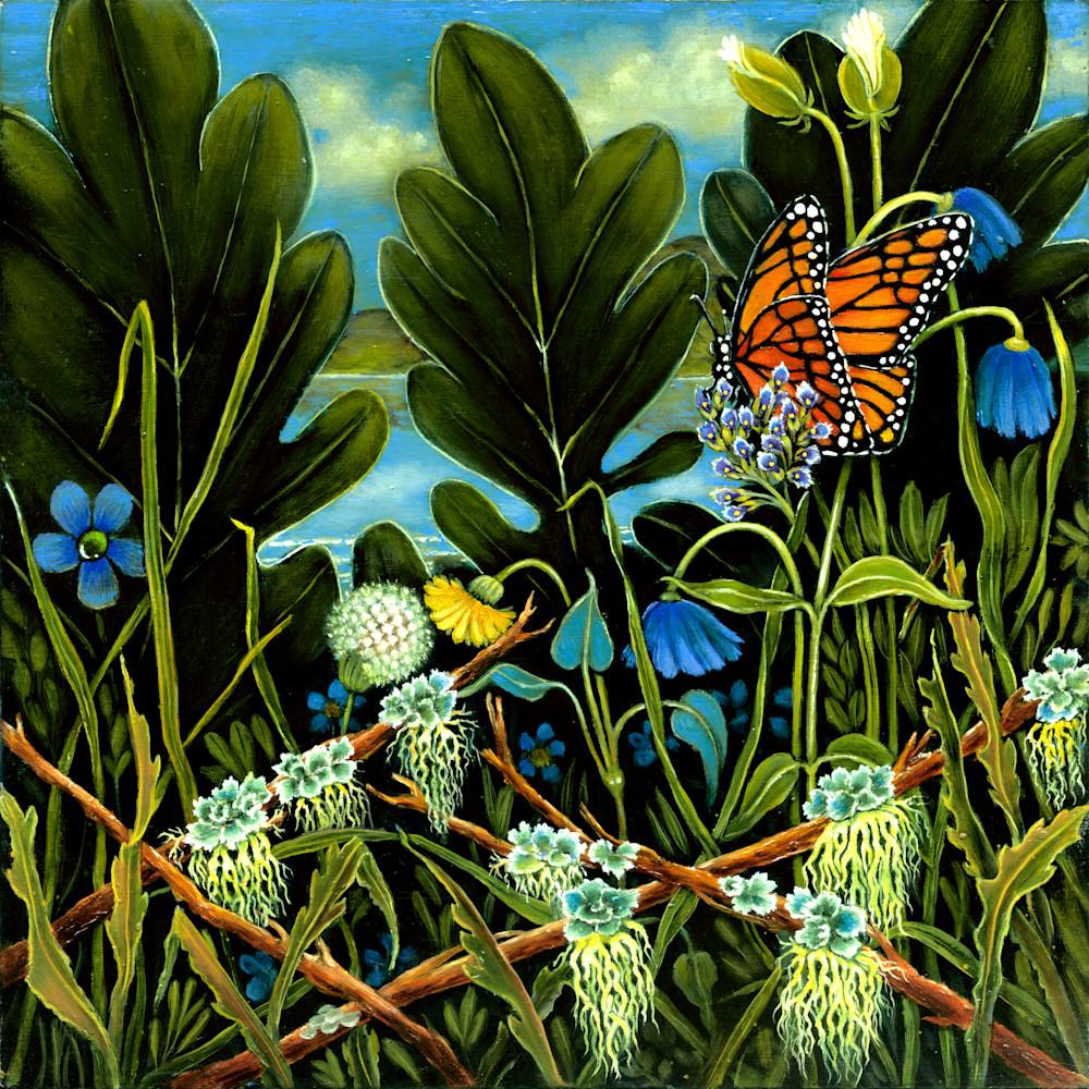 Monarch on flowers original art house jpg yfhwmq