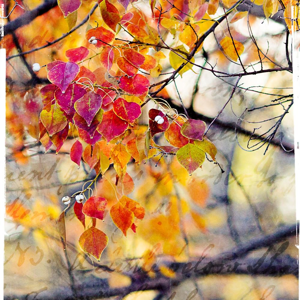 Branch v1 gul3 0127 tnepwl
