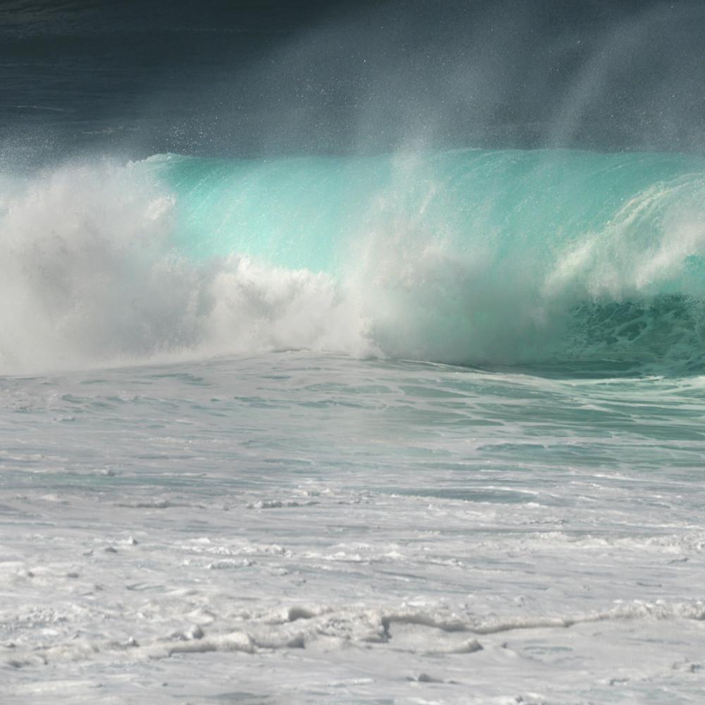 Dsc 7545 hawaiicurlsplash ruthburkeart abit6u