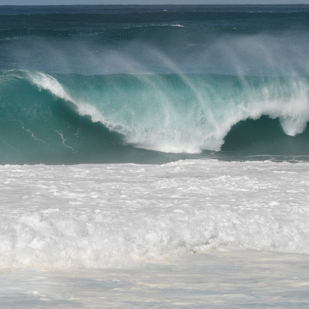 Dsc 7519 hawaii spray ruthburkeart lugpdw