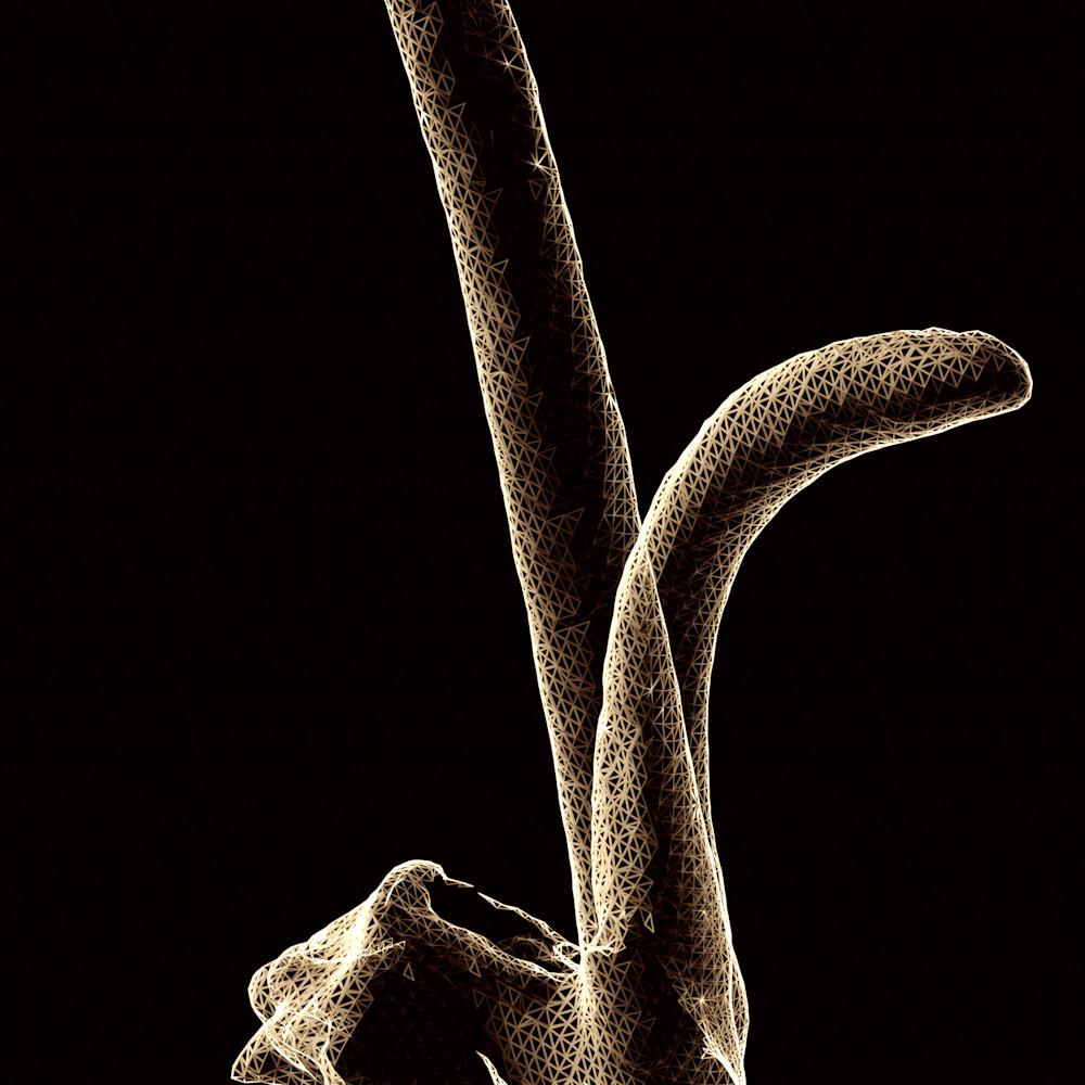Oryx 12x36 lisaniedermeyer comu8m
