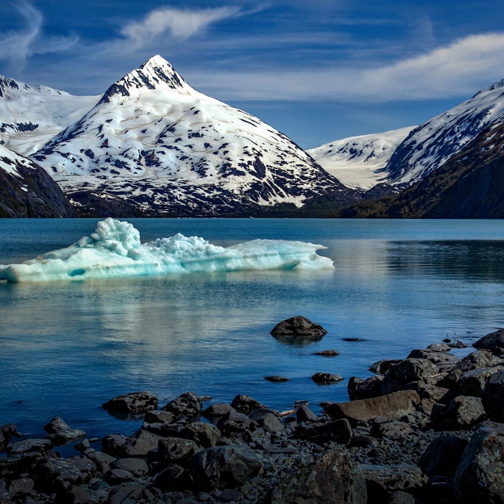 Portage glacier ice 8837fss gojno4