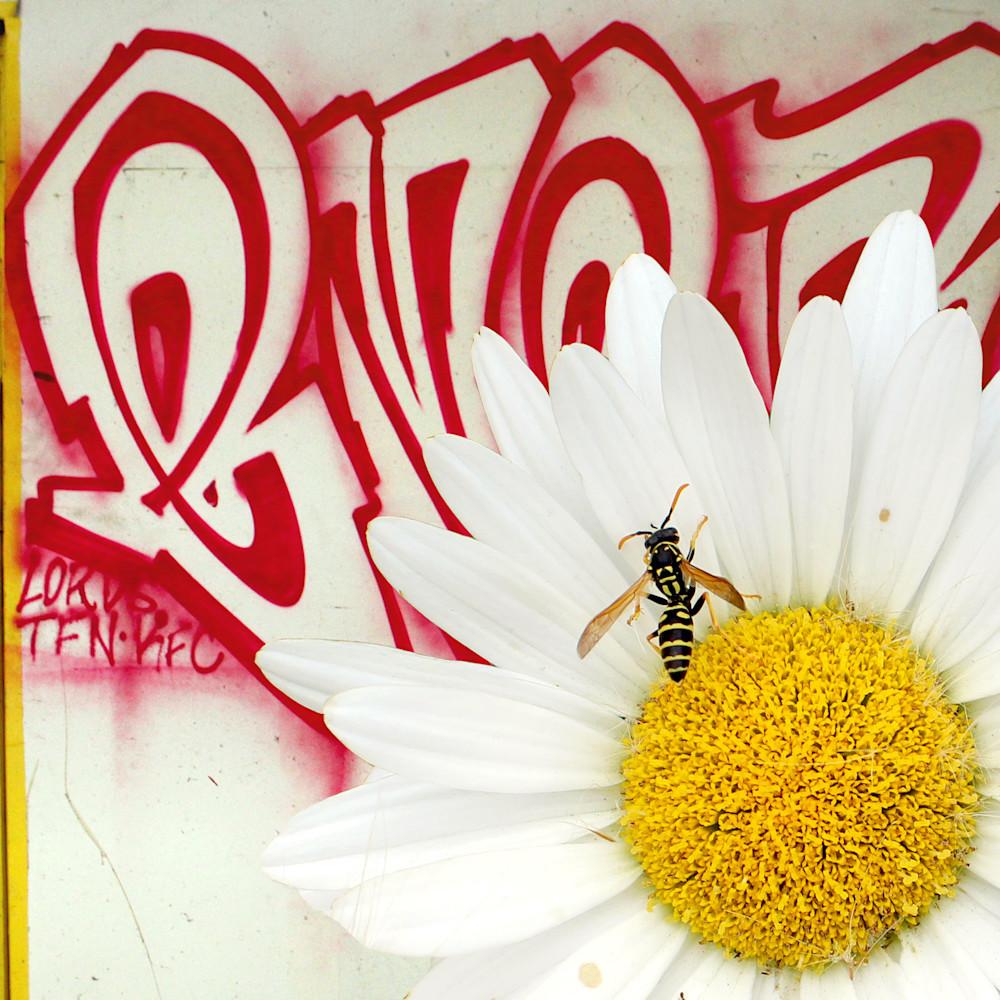 Graffiti bee r1mnnl