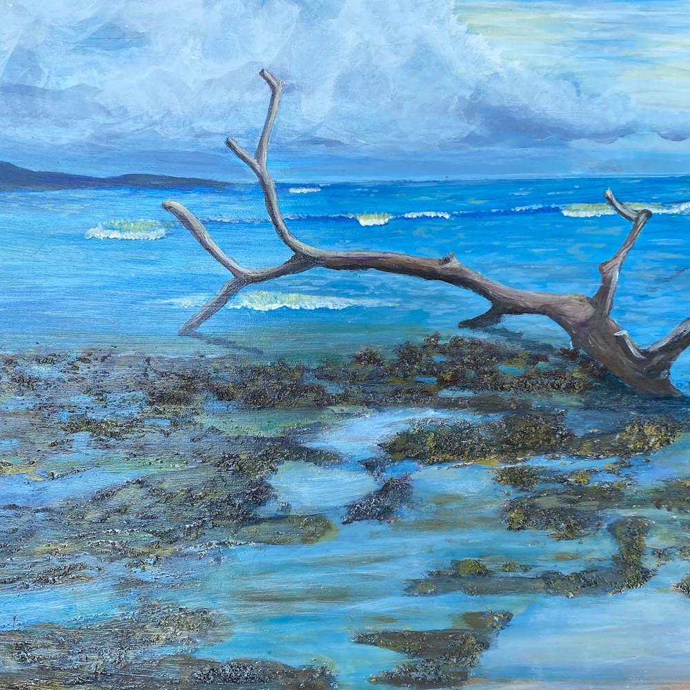 Costa rica beach bhwjlv