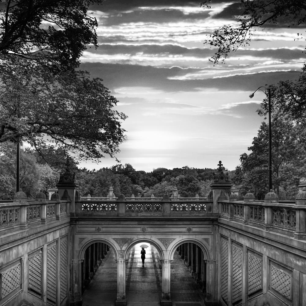 Central park serenity qdwskg